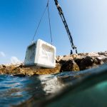 ECOncrete: Un hormigón diseñado para el ambiente oceánico